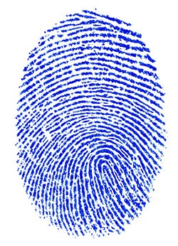 Fingerprint security has been on Apple devices for some time