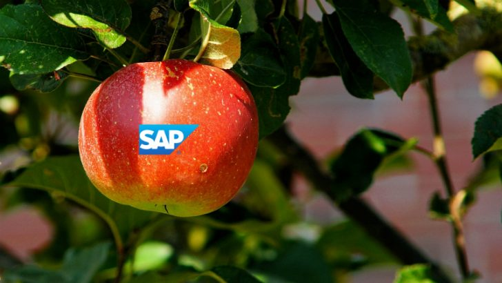 SAP announce first milestones of Apple partnership. Image credit Pixabay/Kapa65 modified by S Brooks 2015